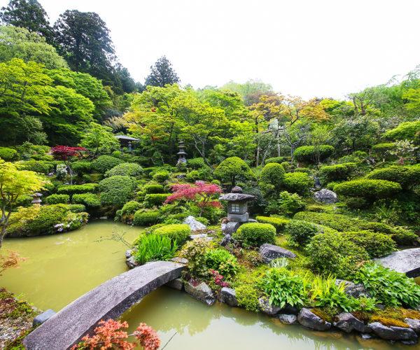 満福寺の庭園