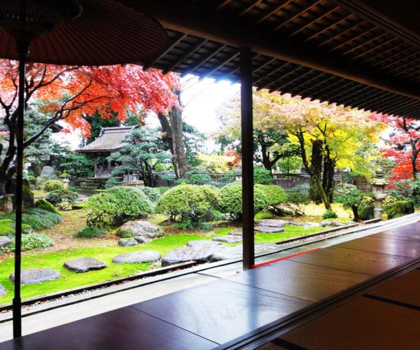 椿寿荘の庭園